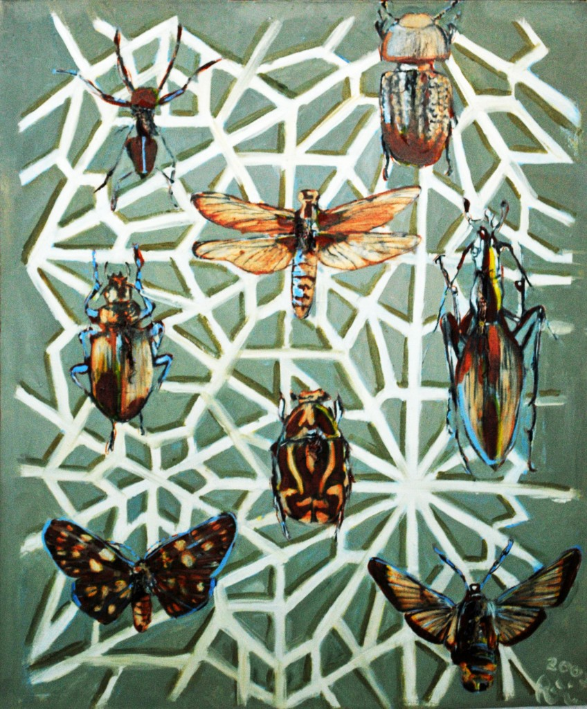 insect-templa-ii-2002-60