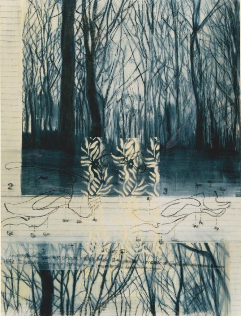 15-My-Nature-2-(1996)-60-x