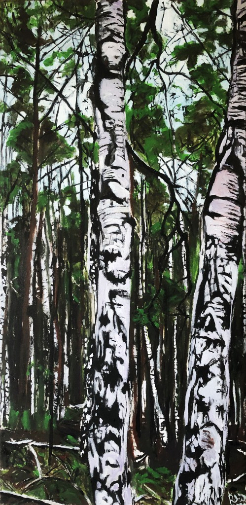 214 Birch-2–2020-(50-x-100)